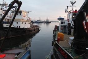 Vissershaven Urk 2