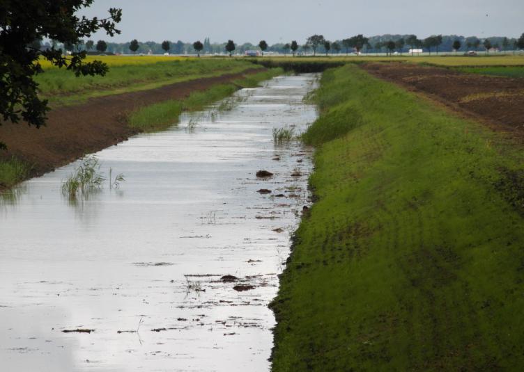 Waterschap 4