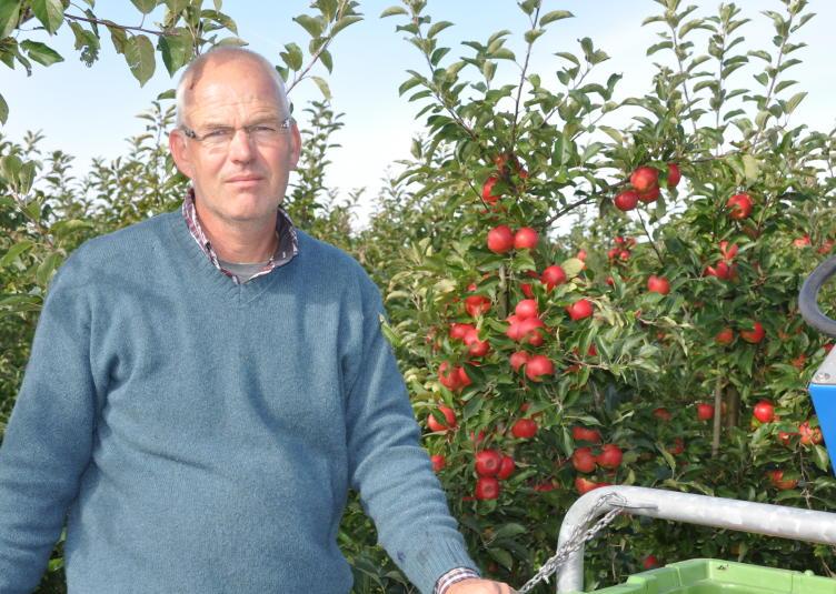 Fruitful Rein Mantel elstar 2012 23-9 110